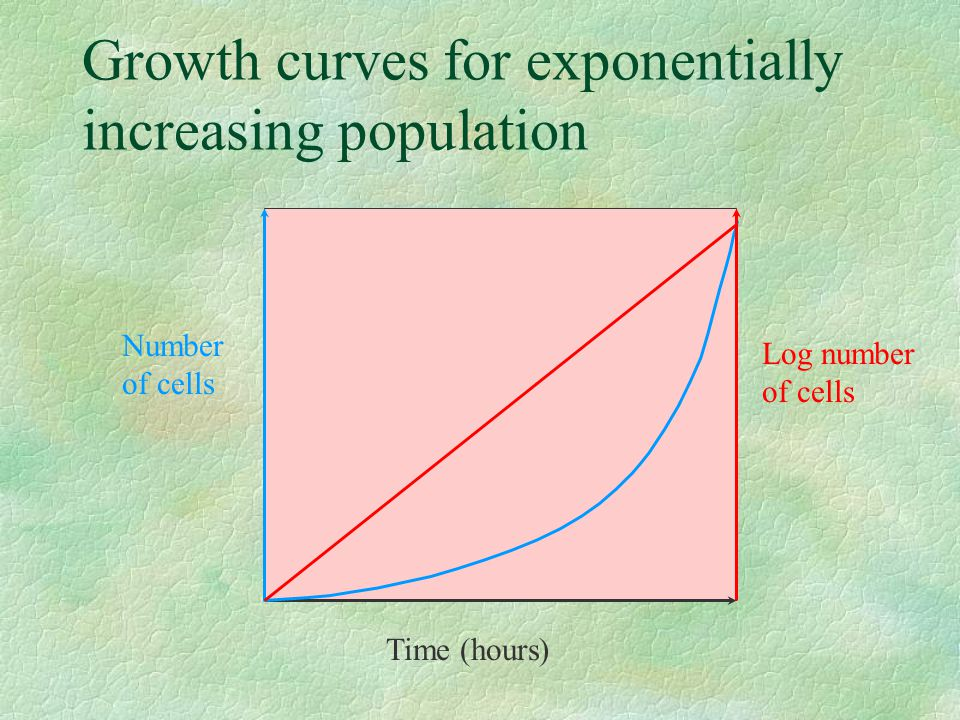 Growth curves for exponentially increasing population