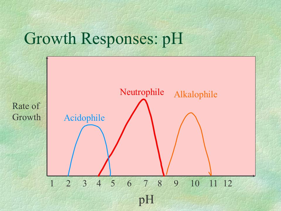 Growth Responses: pH pH Rate of Growth Neutrophile Alkalophile