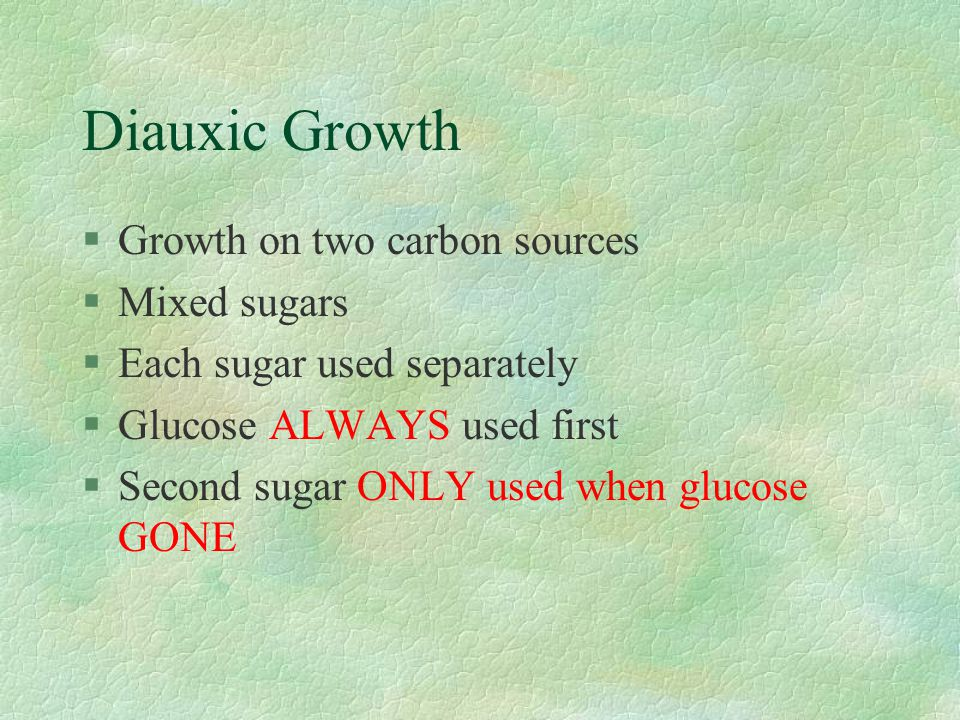 Diauxic Growth Growth on two carbon sources Mixed sugars