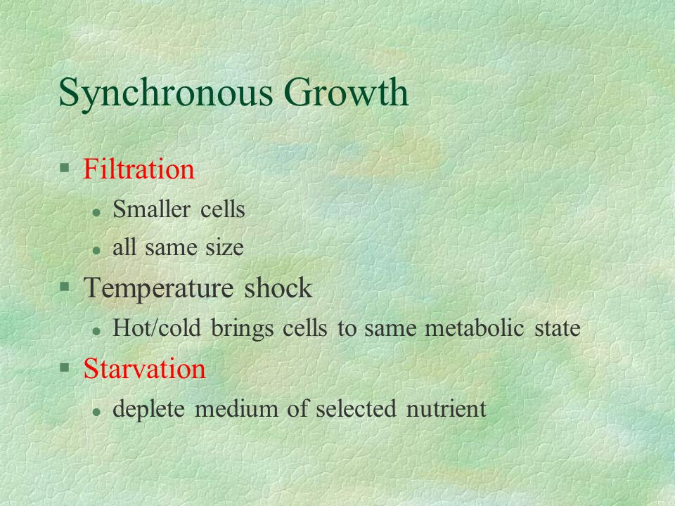 Synchronous Growth Filtration Temperature shock Starvation