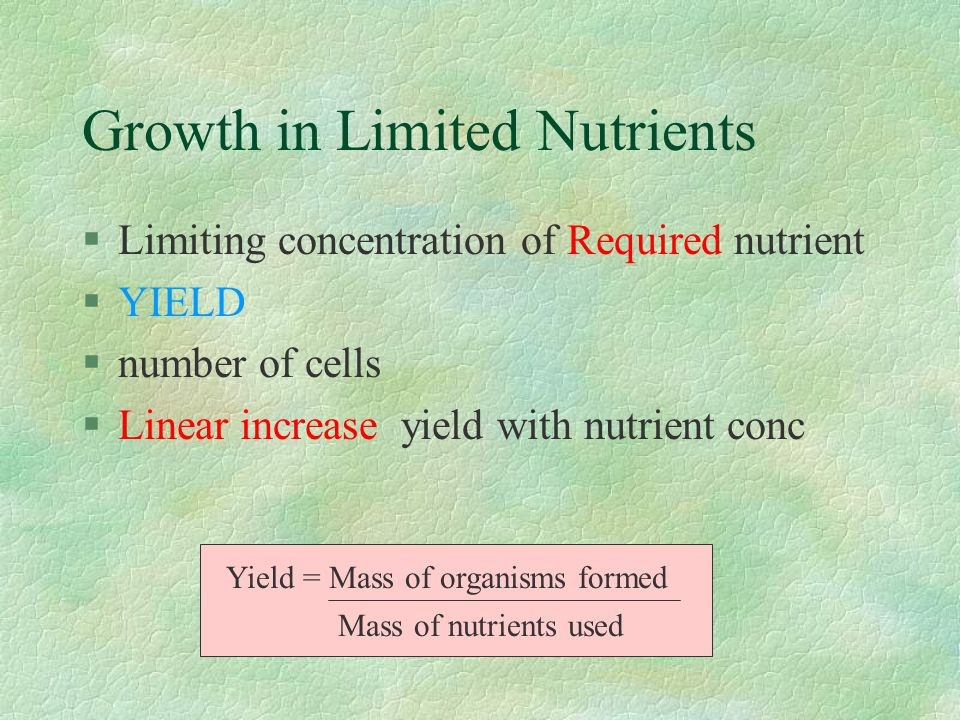 Growth in Limited Nutrients