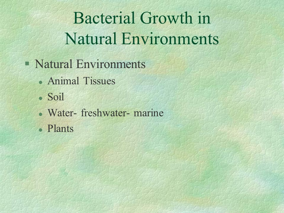 Bacterial Growth in Natural Environments