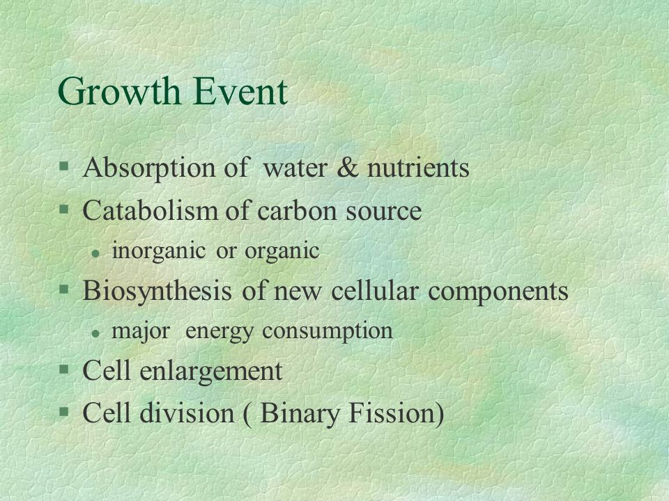 Growth Event Absorption of water & nutrients