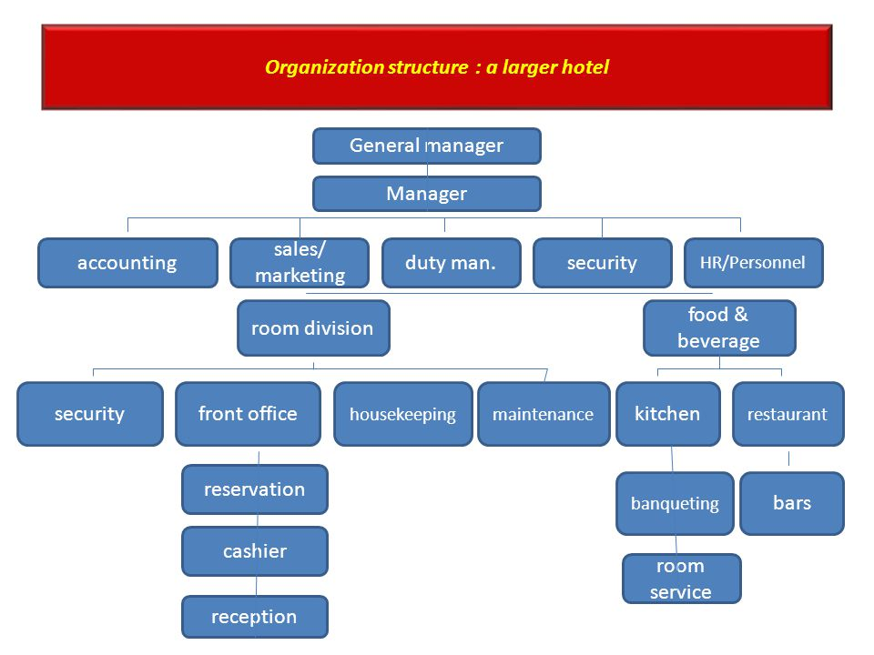 Lesson 3 front office operations maria luisa - Organizational chart of front office department ...
