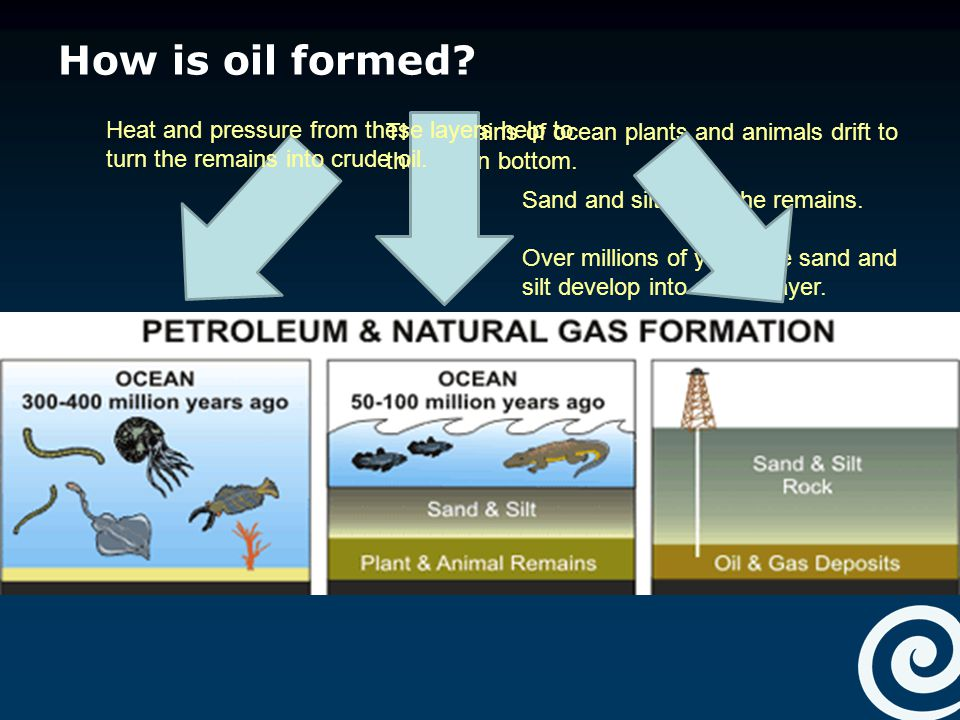 Natural Gas And Oil Are Formed By