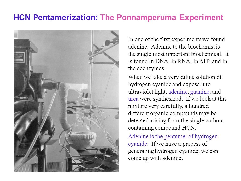 HCN Pentamerization: The Ponnamperuma Experiment