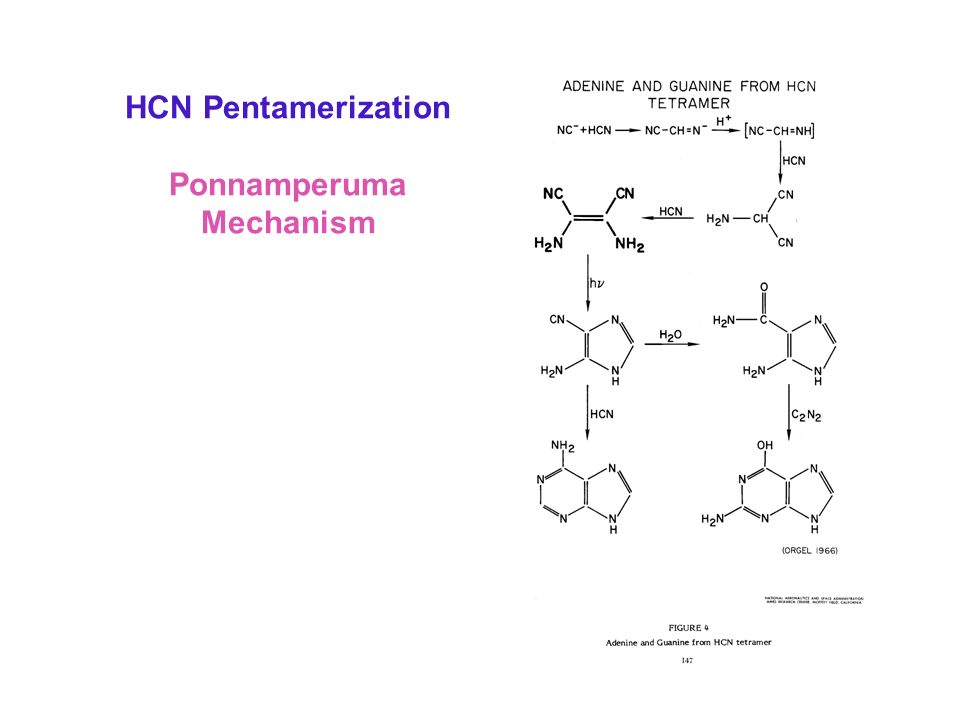 HCN Pentamerization Ponnamperuma Mechanism