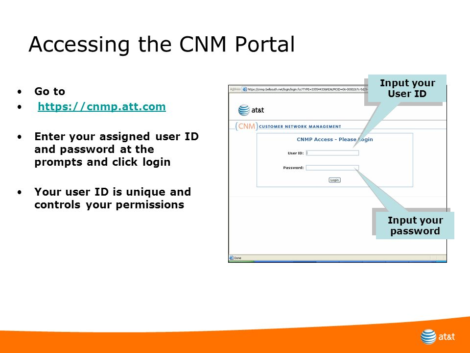 Accessing the CNM Portal
