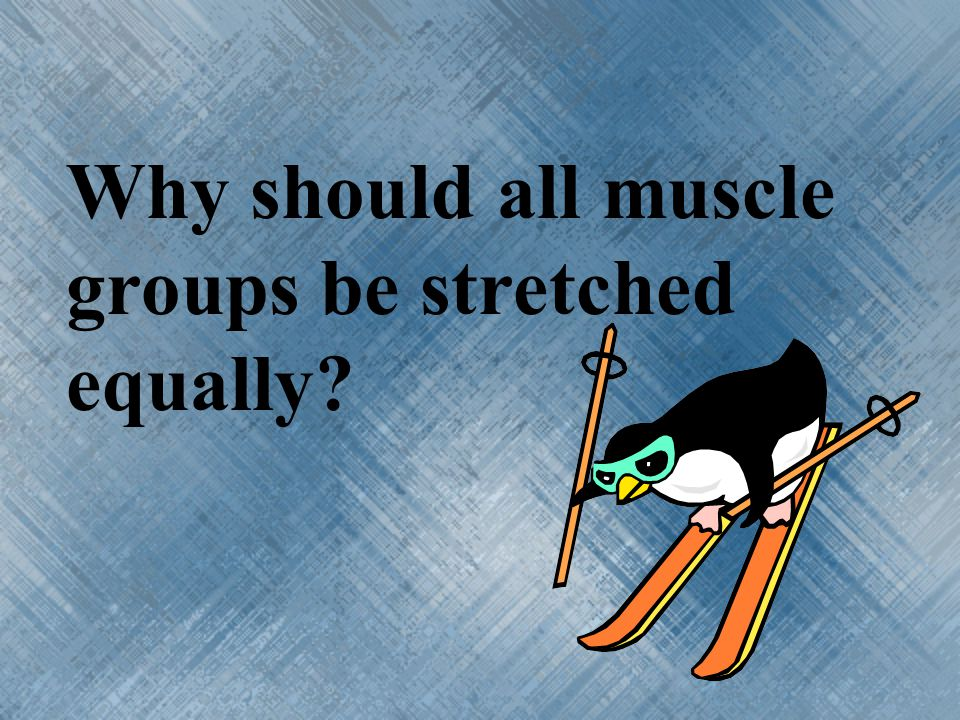 Why should all muscle groups be stretched equally