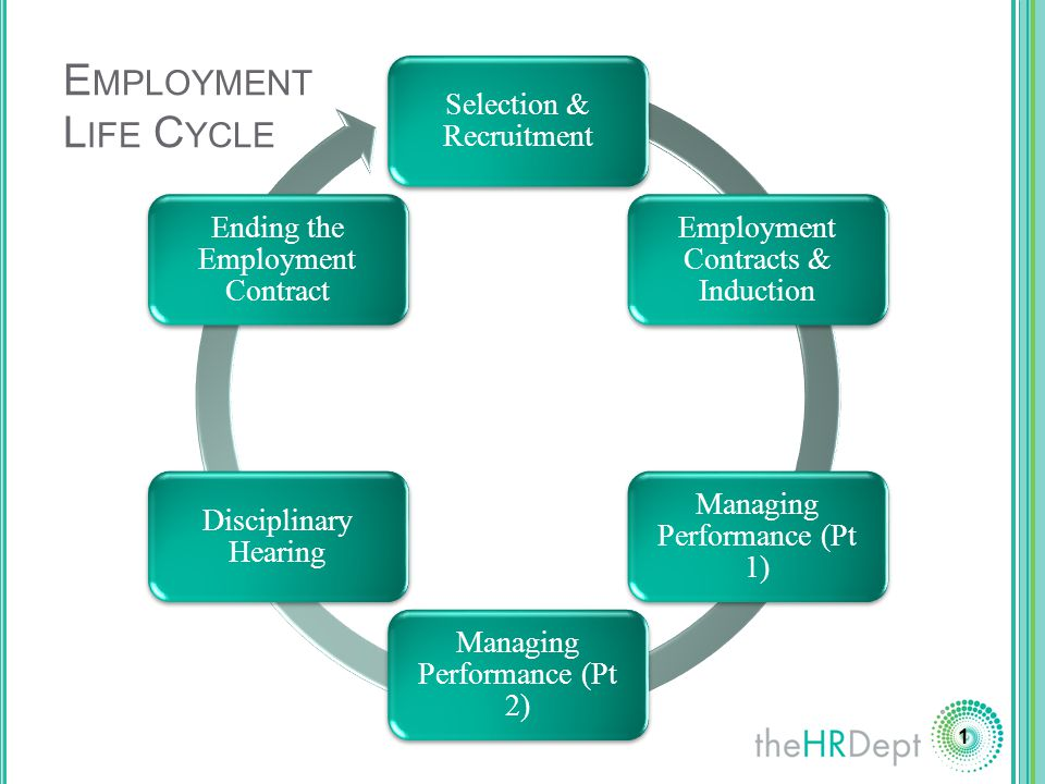 Employment Life Cycle Selection Amp Recruitment Ppt Download