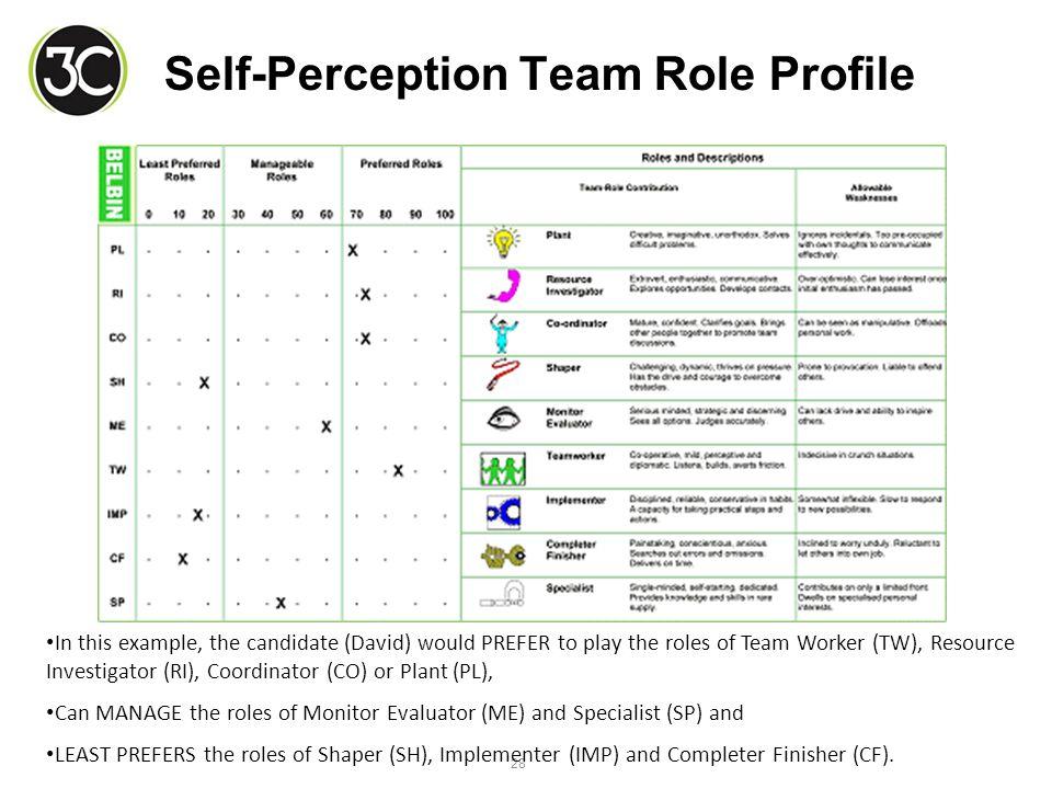 belbin self perception inventory