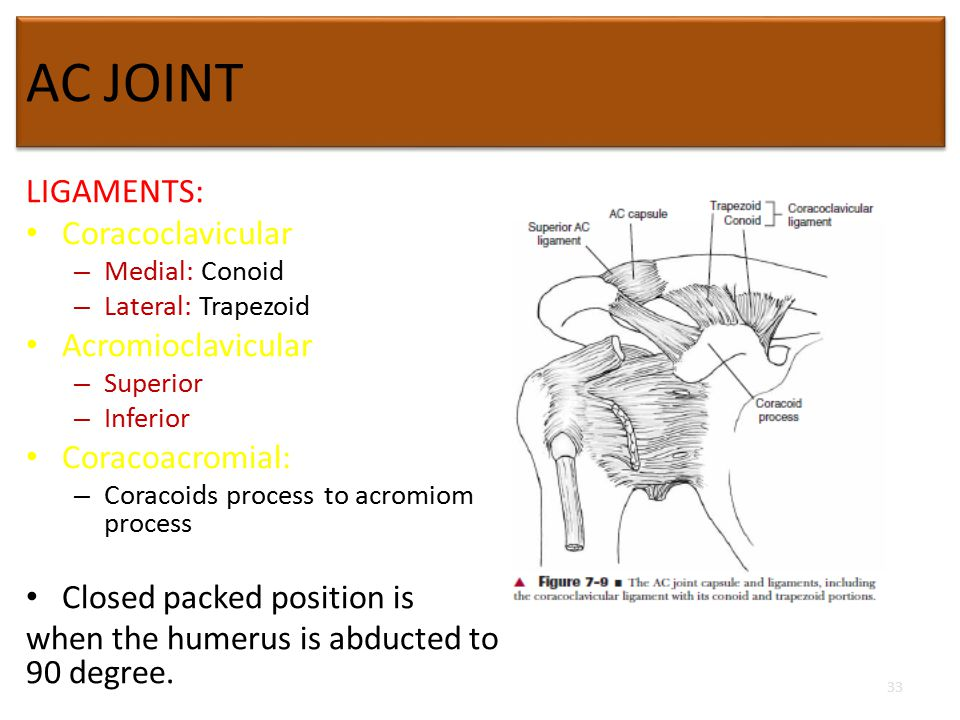 Biomechanics Of Shoulder Complex Ppt Video Online Download