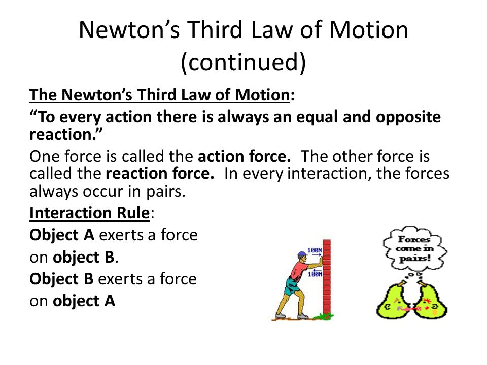 Newton's Third Law of Motion (continued)