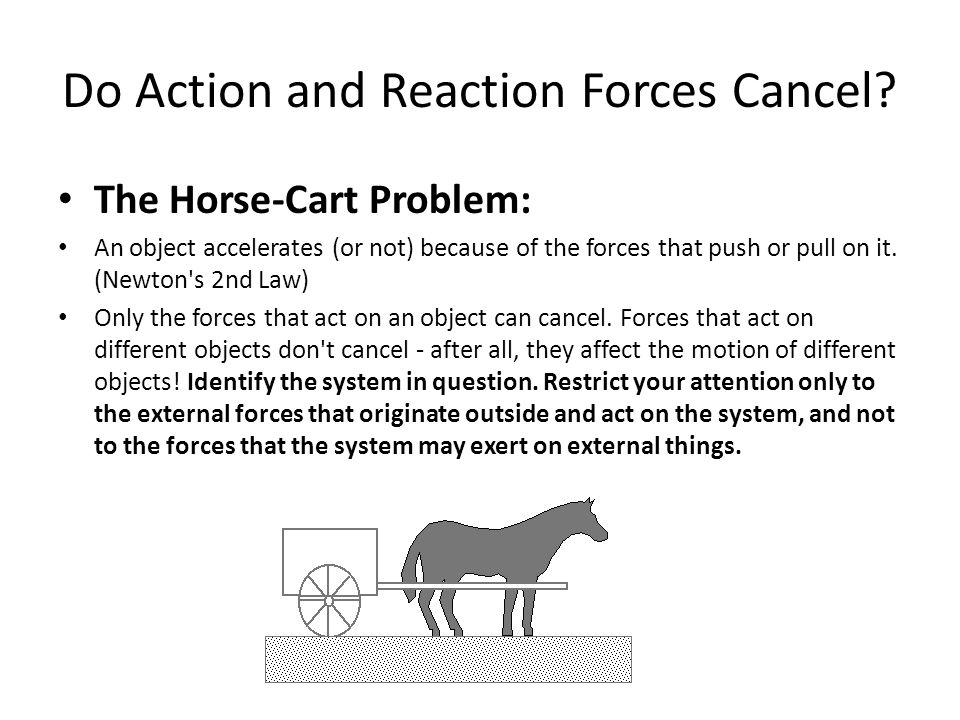 Do Action and Reaction Forces Cancel