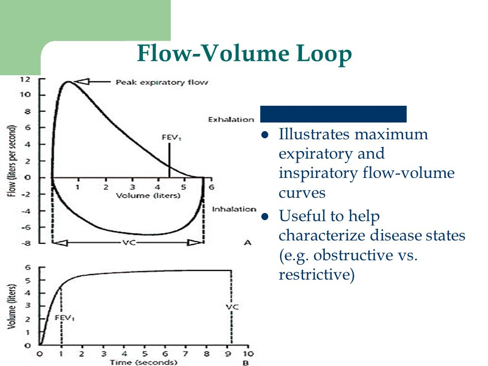 Flow-Volume Loop Illustrates maximum expiratory and inspiratory flow-volume curves.