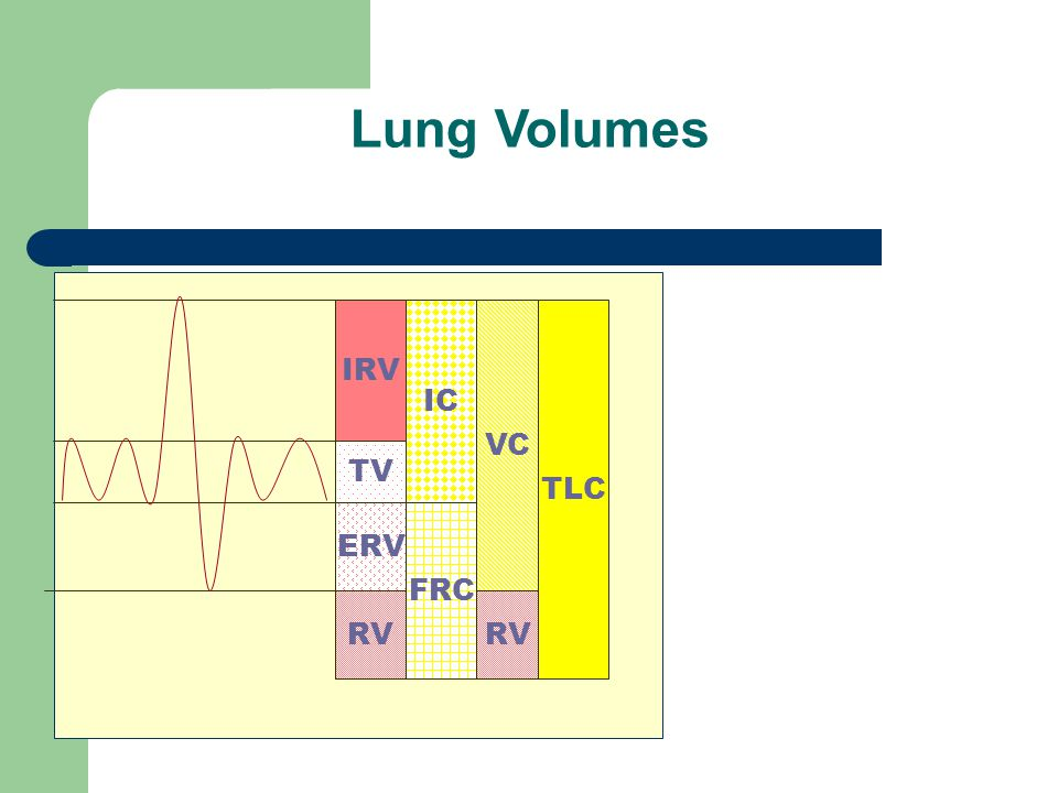 Lung Volumes IRV IC VC TLC TV ERV FRC RV RV