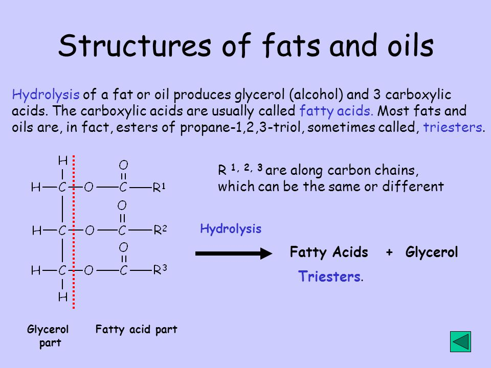 Structures of fats and oils