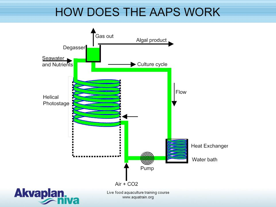 Different technologies for producing Algae - ppt video