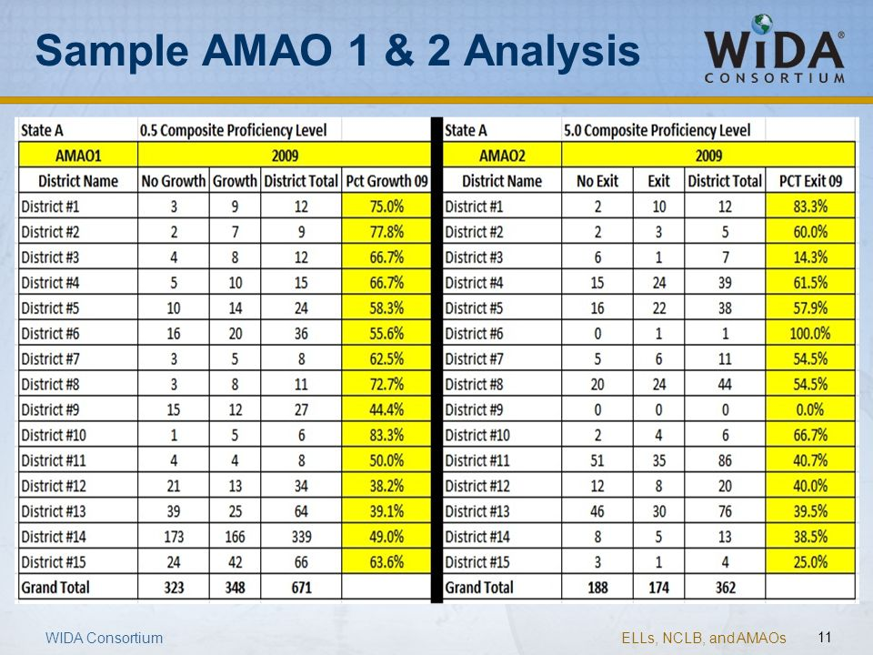 Sample AMAO 1 & 2 Analysis
