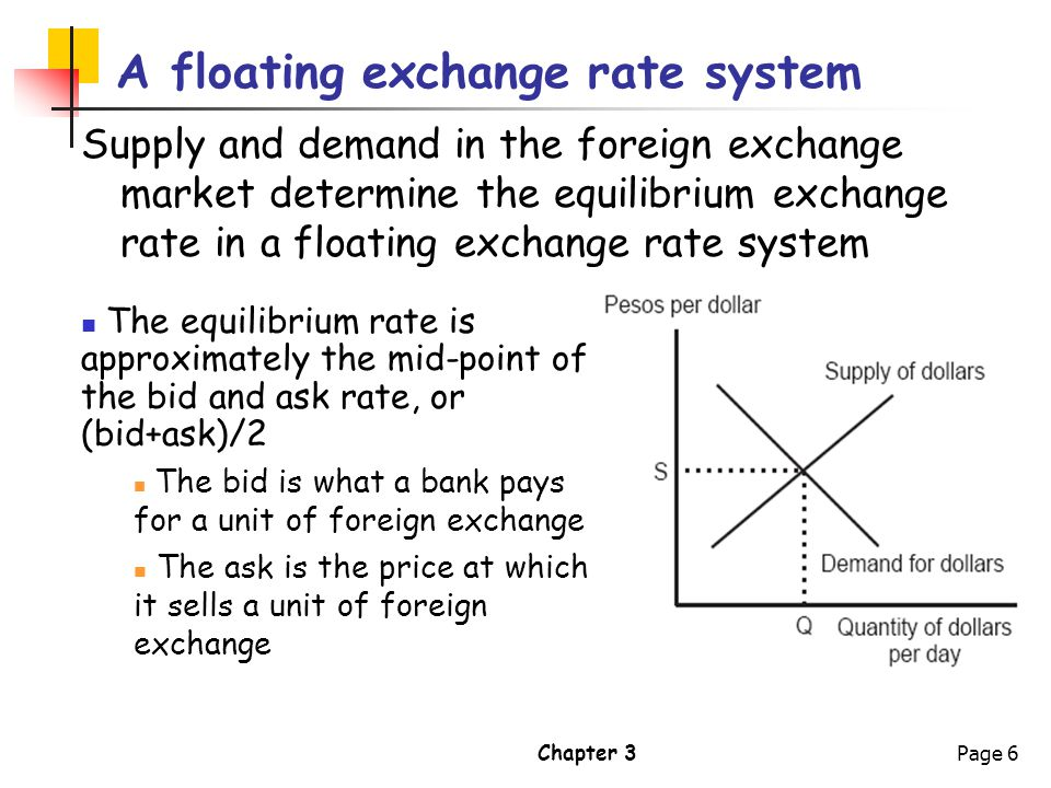 A Floating Exchange Rate System