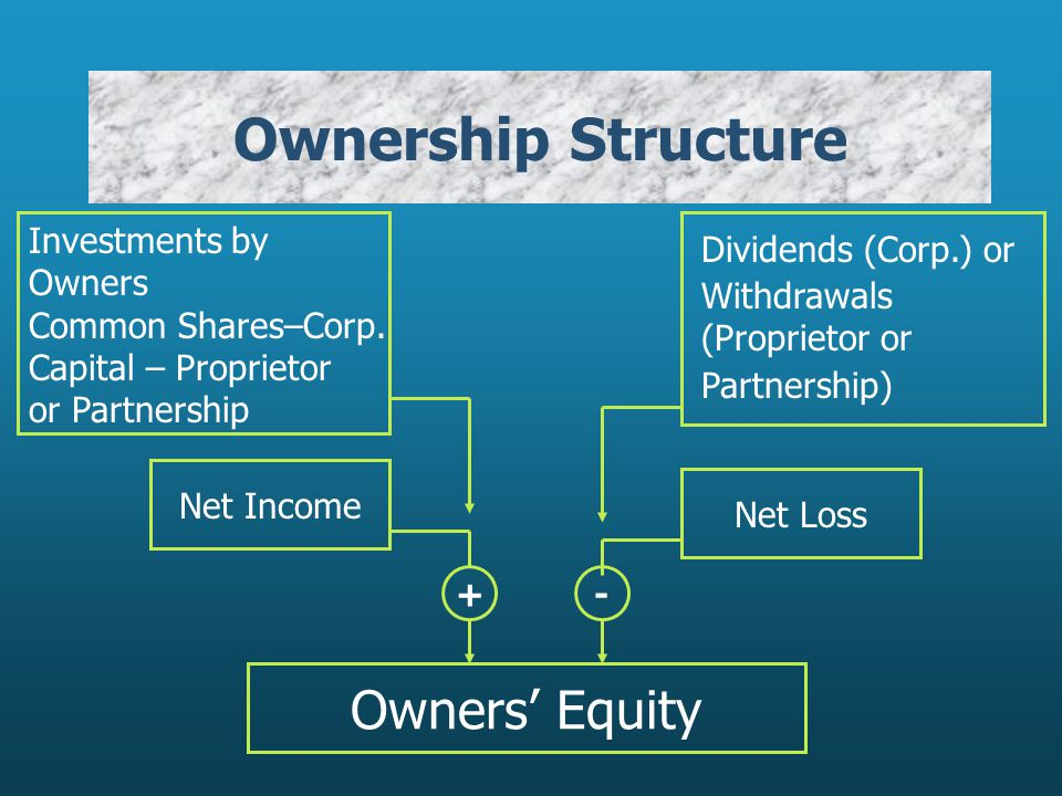 Ownership Structure Owners' Equity Net Income + Investments by Owners