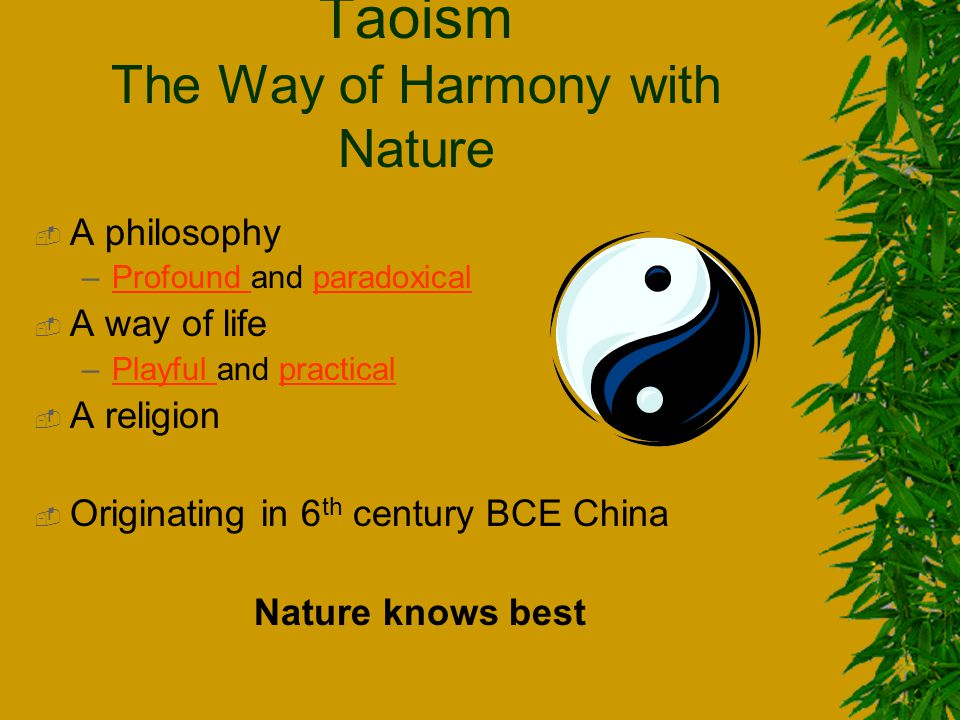 philosophy religion in china ppt video online download rh slideplayer com User Guide Template Online User Guide