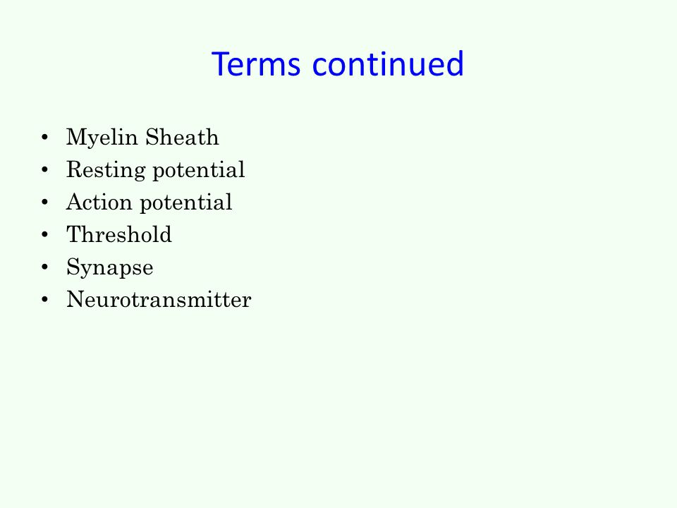 Terms continued Myelin Sheath Resting potential Action potential