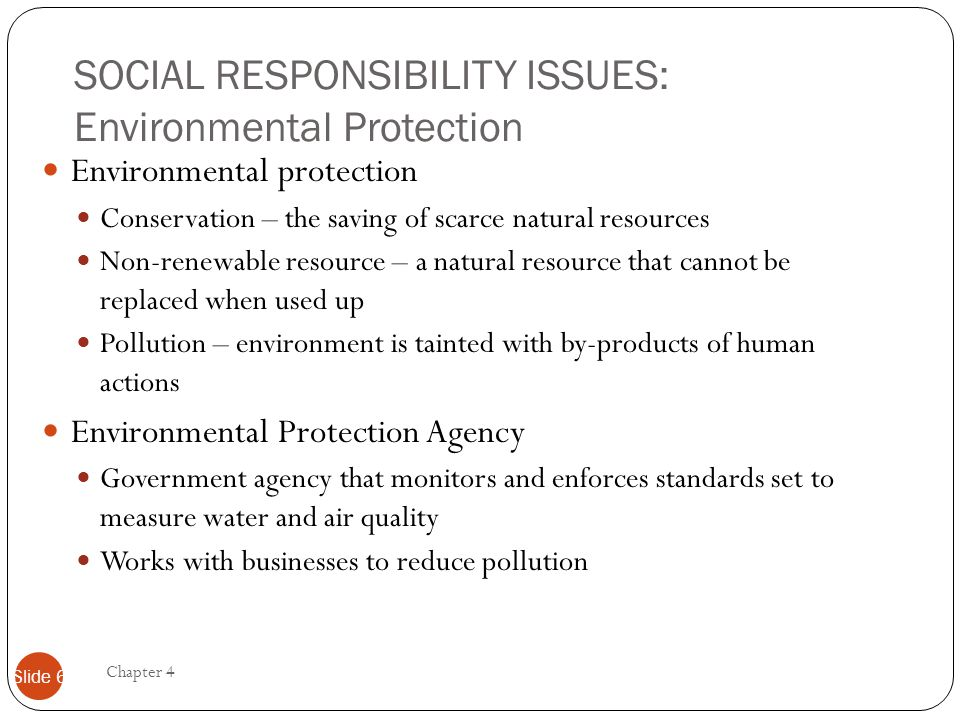 SOCIAL RESPONSIBILITY ISSUES: Environmental Protection