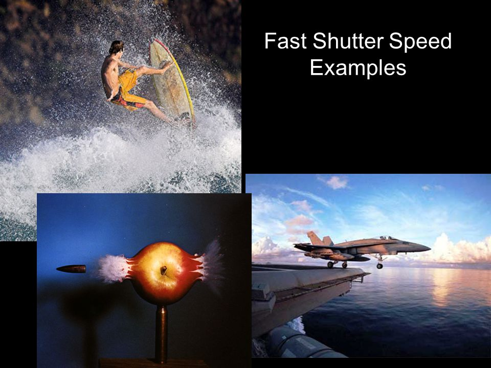 Fast Shutter Speed Examples