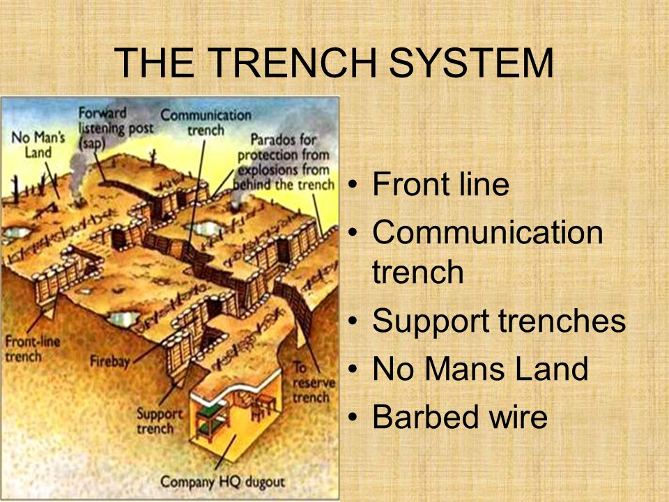 THE TRENCH SYSTEM Front line Communication trench Support trenches