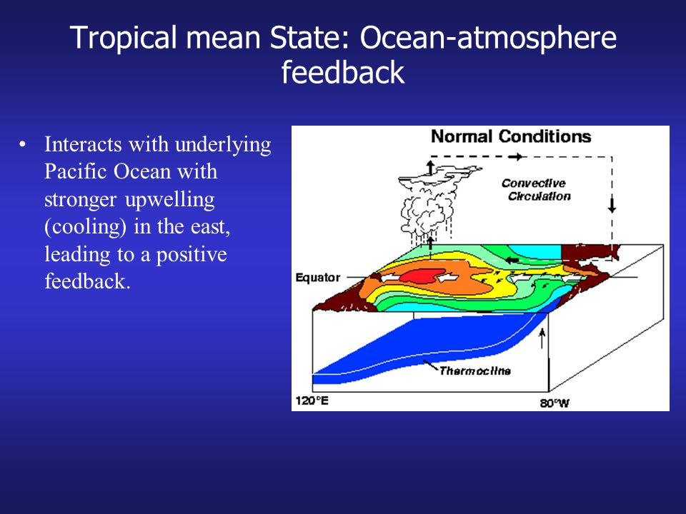Tropical mean State: Ocean-atmosphere feedback