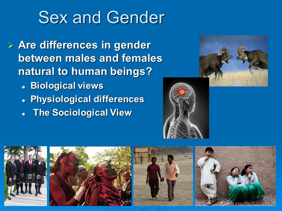 Sex and Gender Are differences in gender between males and females natural to human beings Biological views.
