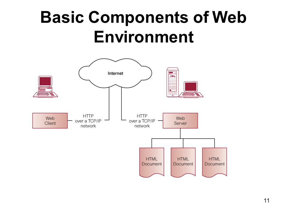 Basic Components of Web Environment