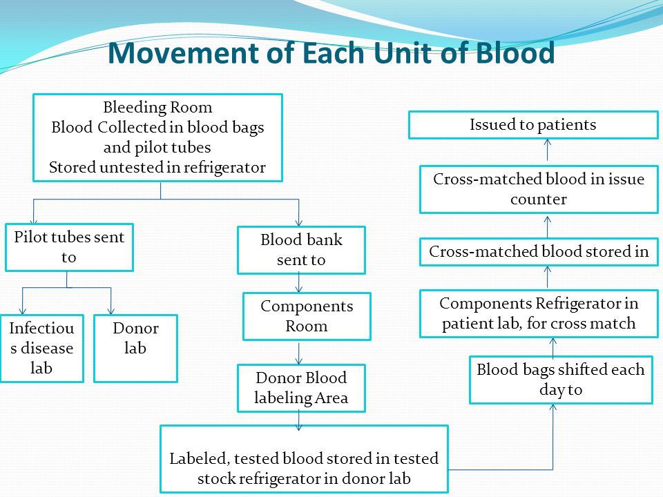 Movement of Each Unit of Blood