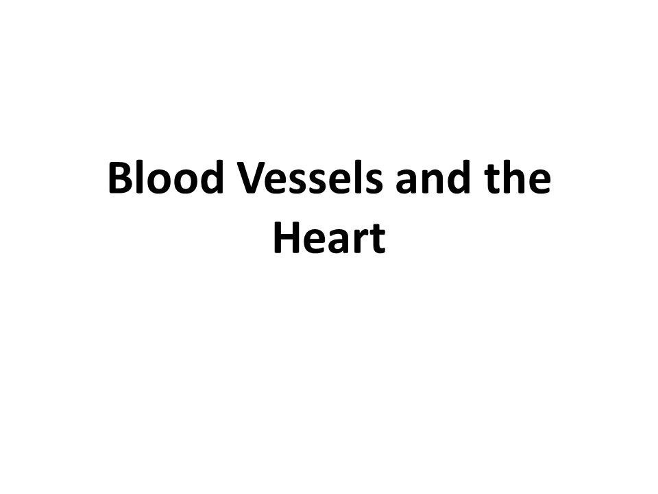 Blood Vessels and the Heart