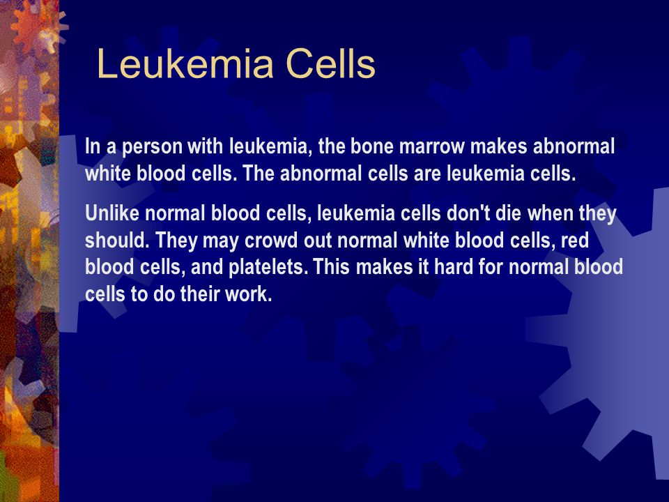 Leukemia Cells In a person with leukemia, the bone marrow makes abnormal white blood cells. The abnormal cells are leukemia cells.