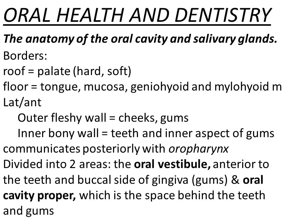 Oral Health And Dentistry Ppt Download