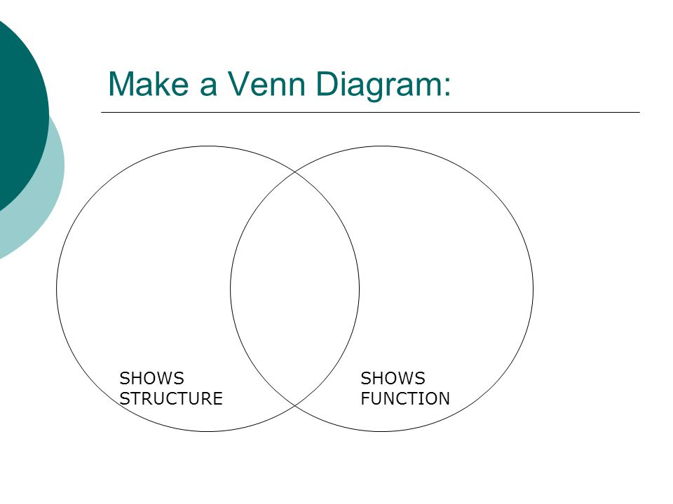 Make a Venn Diagram: SHOWS STRUCTURE SHOWS FUNCTION