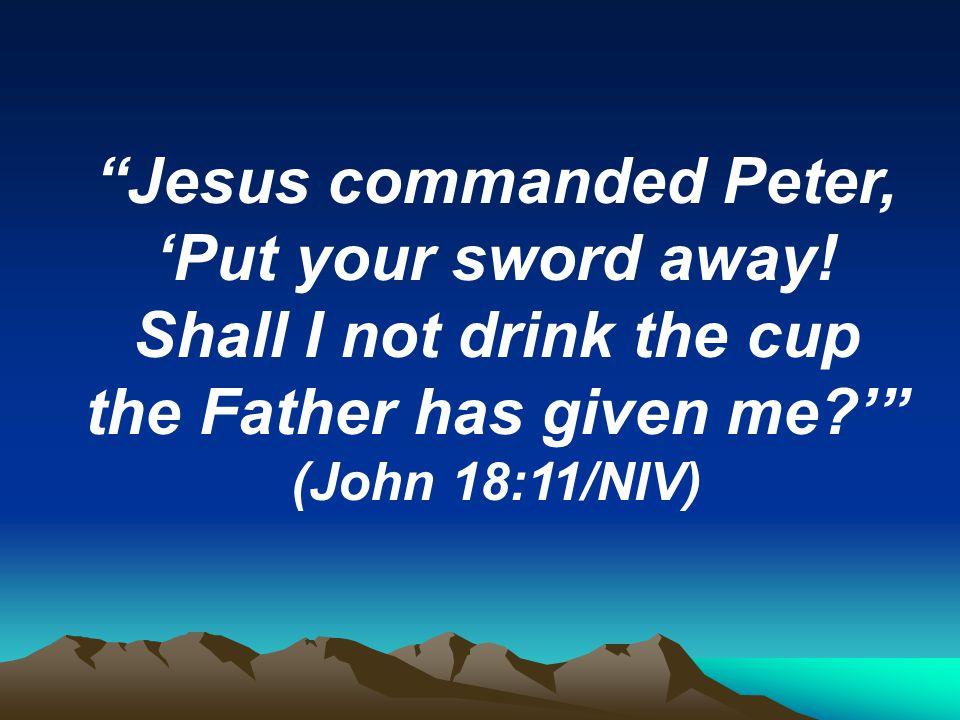 Kuvahaun tulos haulle John 18:11