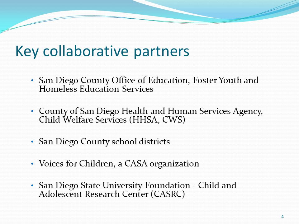 Key collaborative partners