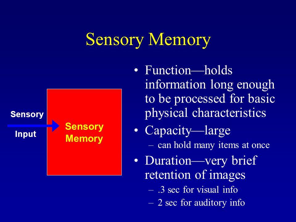 sensory memory function