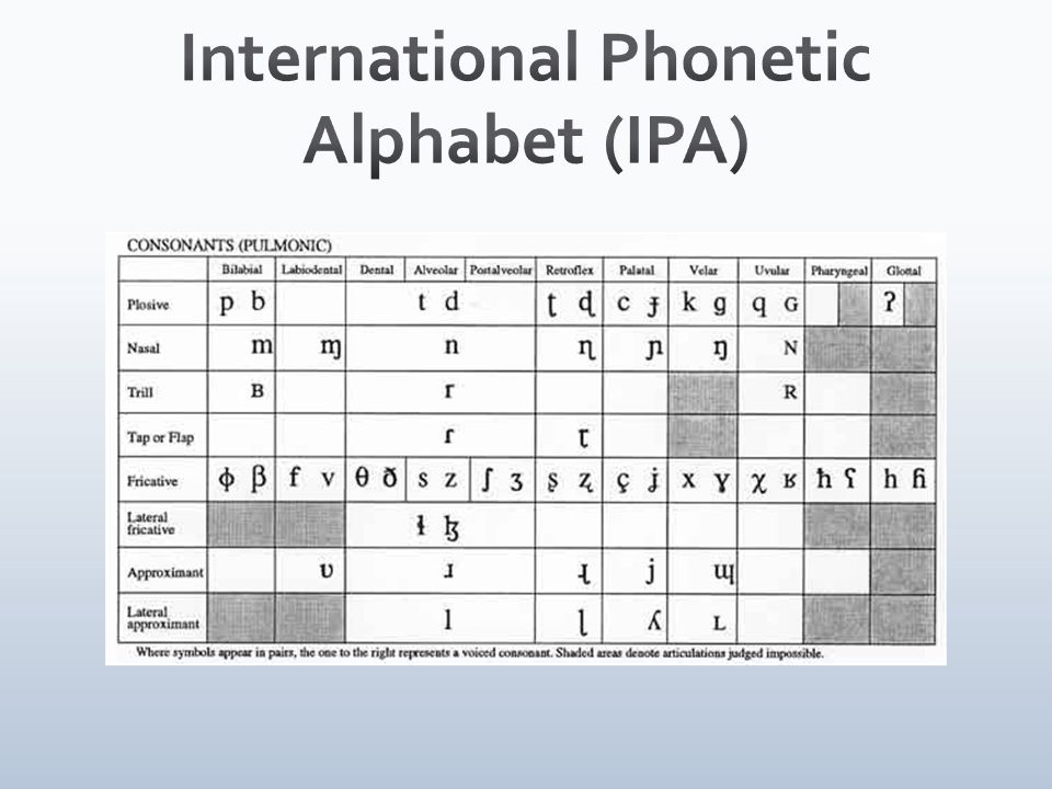 International Phonetic Alphabet (IPA)