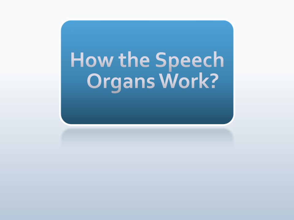 How the Speech Organs Work