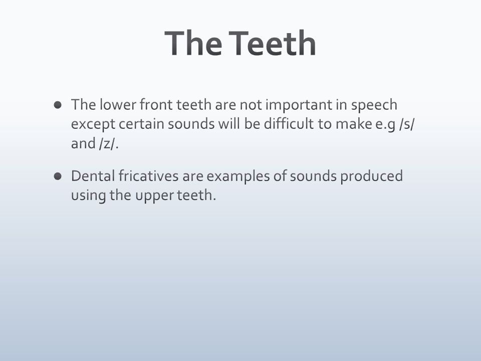 The Teeth The lower front teeth are not important in speech except certain sounds will be difficult to make e.g /s/ and /z/.