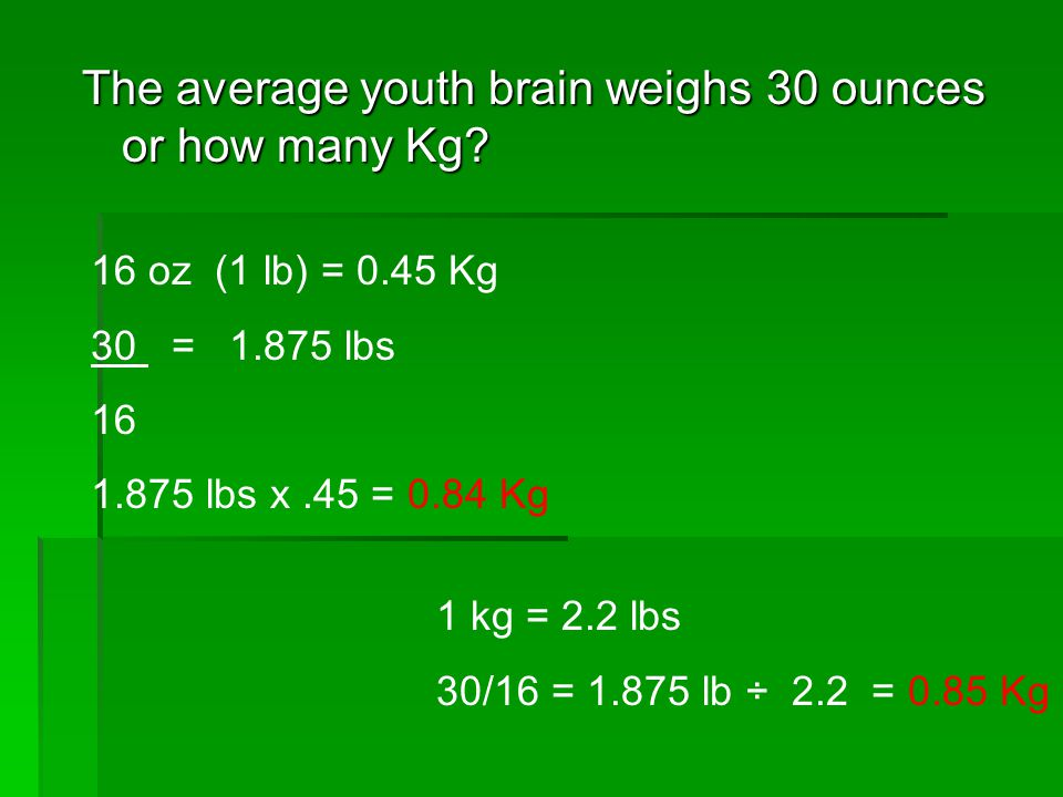 The Average Youth Brain Weighs 30 Ounces Or How Many Kg