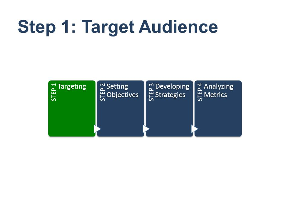 Step 1: Target Audience Targeting Setting Objectives