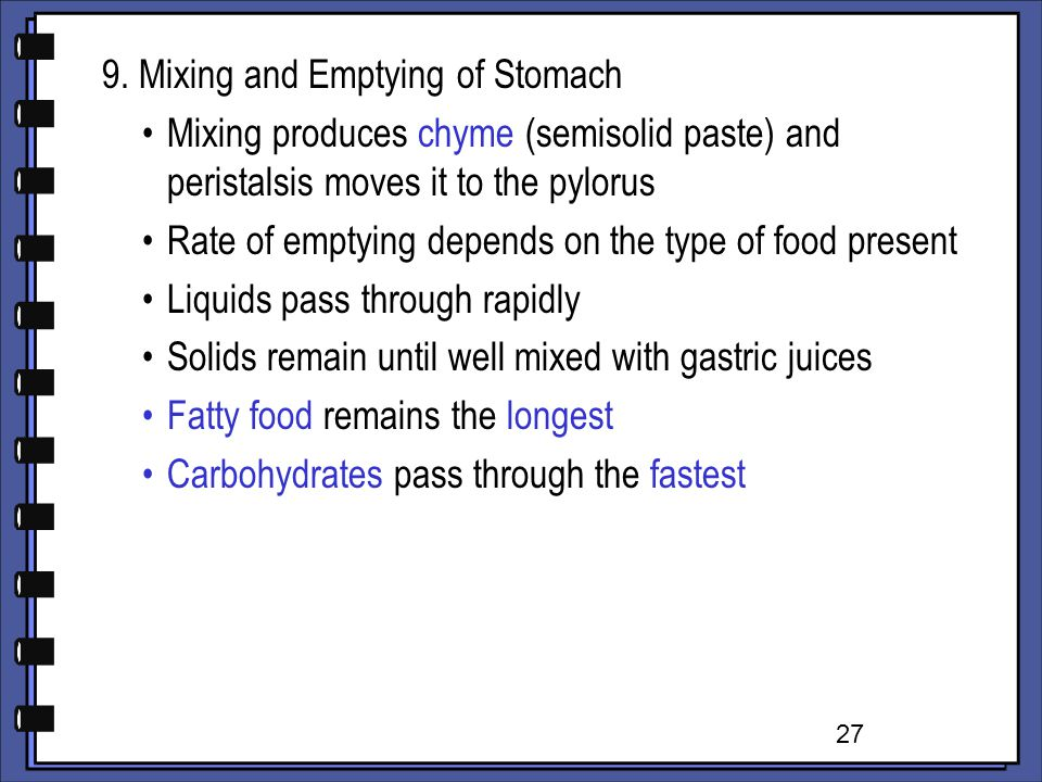 9. Mixing and Emptying of Stomach