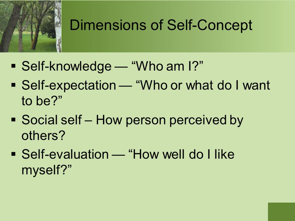 Dimensions of Self-Concept