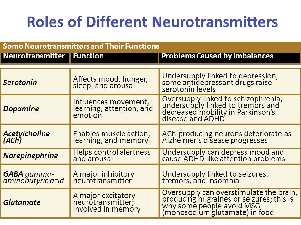 Roles of Different Neurotransmitters