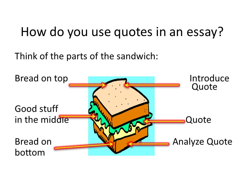 Resultado de imagen para introducing quotations in an essay sandwich structure
